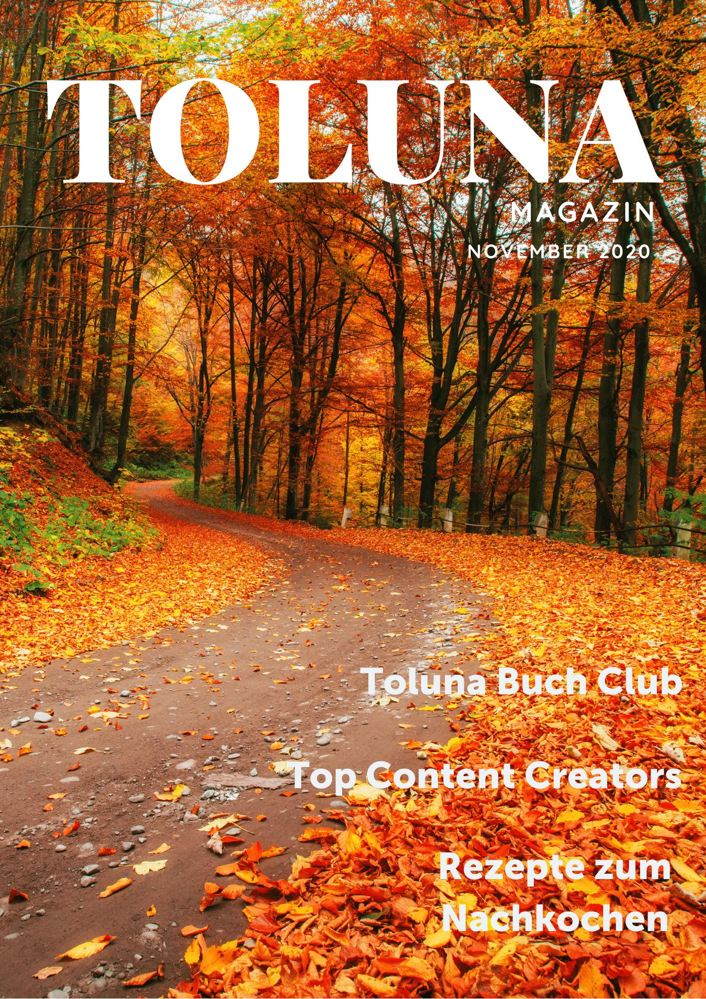 DE November Magazin